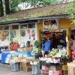 Nesvakidašnji događaj u Banjaluci: Preobratila ga glavica kupusa!