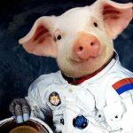 ANKETA: Šta bi Srbi lansirali u svemir da imaju para?!